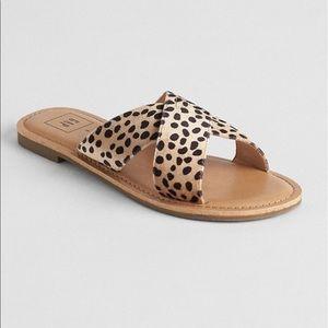 gap leopard print sandals // size 8